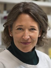 prof. dr. A.B. Maier